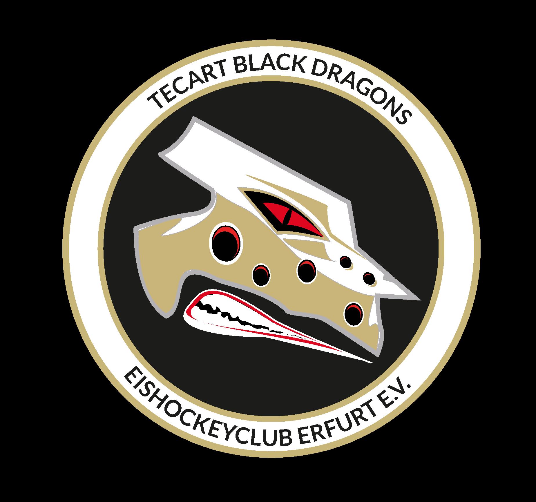 persoperm Logo BlackDragons Erfurt